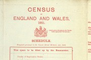 RG27-8 Census 1911(Red Schedule front)