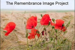 The Remembrance Image Project (c. Simon Gregor used by kind permission)